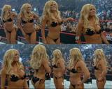 Torrie Wilson in raw bikini contest Foto 178 (���� ������ � ����� ������� ������ ���� 178)